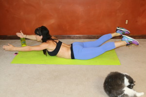 Side Fat Workout Love Handles At Home