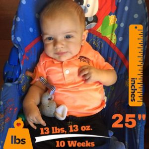 10-Weeks Old. 98th Percentile for Height, and 75th Percentile for Weight.